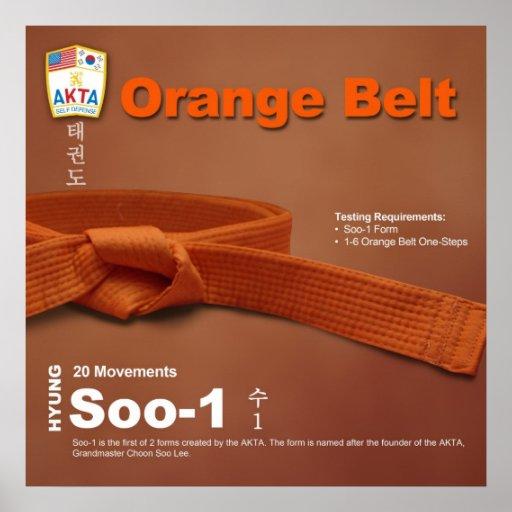 10-3 Orange Belt Do-jang Poster