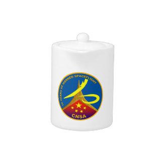 10 años de vuelo espacial servido