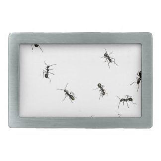 10 ants belt buckle