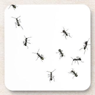 10 ants beverage coaster