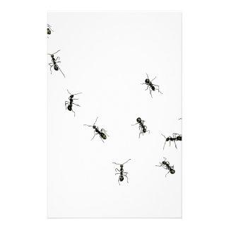 10 hormigas papelería