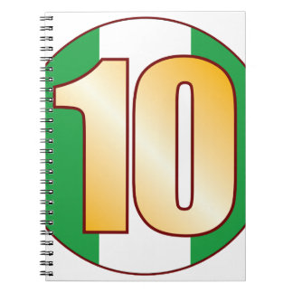 10 NIGERIA Gold Spiral Notebook