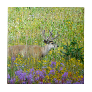 10 Point velvet buck in a field of wildflowers Ceramic Tile