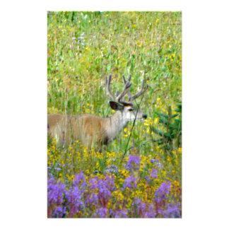 10 Point velvet buck in a field of wildflowers Stationery