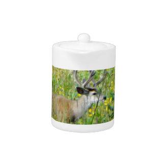 10 Point velvet buck in a field of wildflowers Teapot