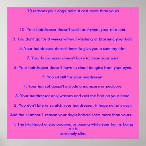10 razones el corte de pelo de sus perros costaron posters