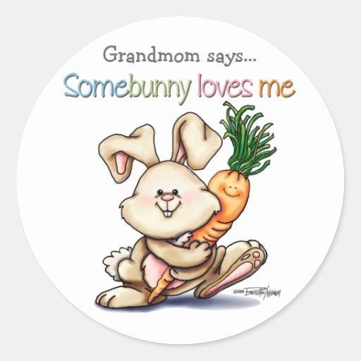 10x10-some-bunny pegatina redonda