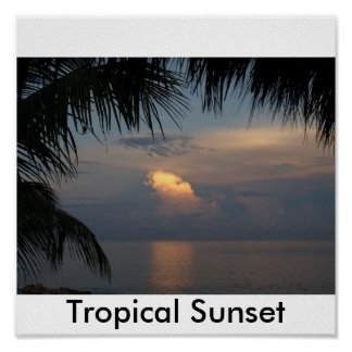 111, Tropical Sunset Poster