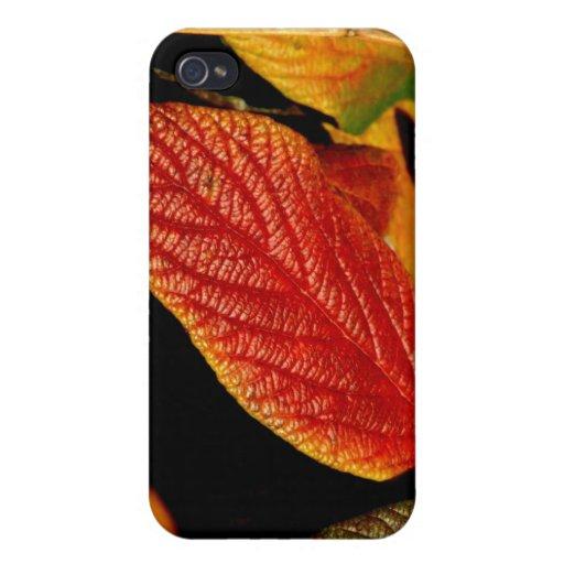 112209-103-APO iPhone 4/4S FUNDAS