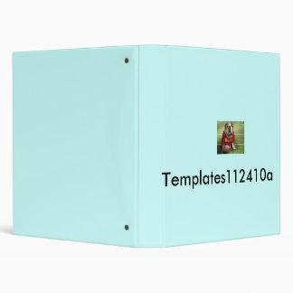 112410a binder