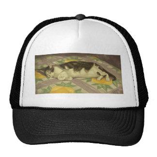 1149 Cat on Quilt Trucker Hat