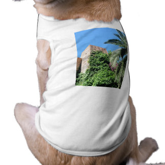 1179 CASTLE TOWER RUINS MYSTERIOUS HISTORICAL ARCH SHIRT