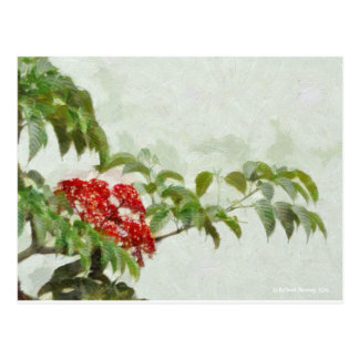 117 BRANCH OF RED AND GREEN POSTCARD