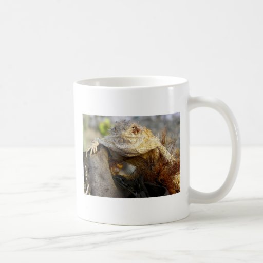 11/3/11 Redoing Some Images To Other Items Coffee Mug