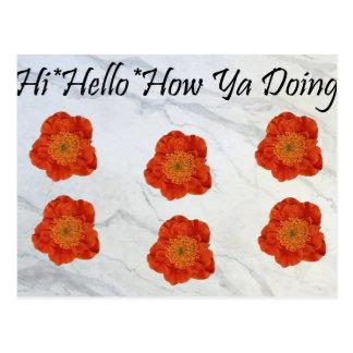 11 hola hola cómo usted que hace tarjeta postal