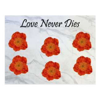 11 Love Never Dies Postcard