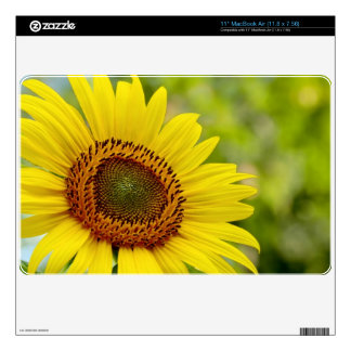 """11"""" MacBook Air with sunflower image Skins For 11"""" MacBook Air"""