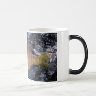 11 oz. Morphing Sunfish Mug