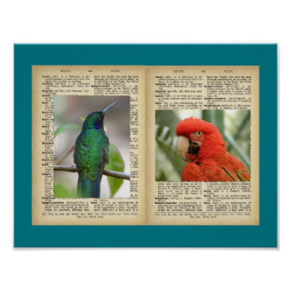 "11"" x 8.5"", Poster (Bird And Text Vintage Designs)"