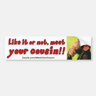 11x3 Bumper Sticker