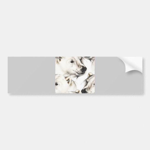 120406-polarbears WHITE GREY GRAY POLAR BEARS COLL Bumper Stickers
