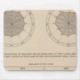 124 Deaths diseases digestive system, liver Mouse Pad