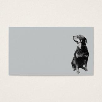 12642 rottweiler vector PETS DOGS ROTTI ROTTWEILER Business Card