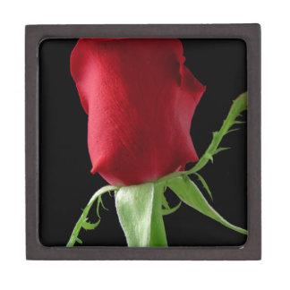 12784322391526631228rose-hi.png gift box