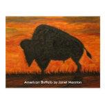 129 búfalo americano JM-008-129 Janet Marston,… Tarjeta Postal