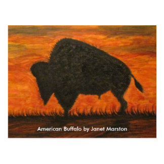129 búfalo americano JM-008-129 Janet Marston,… Postal