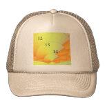 12/13/14 Digital Sunrise Trucker Hat