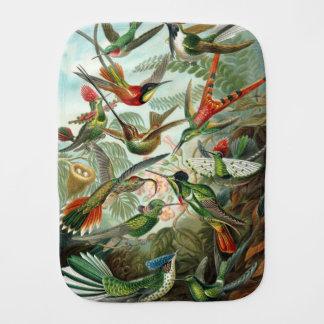 12 american humming birds breeds painted drawn baby burp cloth