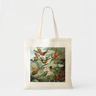12 american humming birds breeds painted drawn tote bag