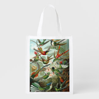 12 american humming birds breeds painted drawn grocery bag