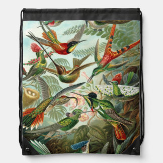 12 american humming birds breeds painted drawn drawstring bags