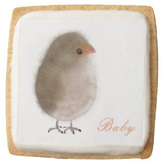 12 Cute Baby Shower Cookies Shortbread