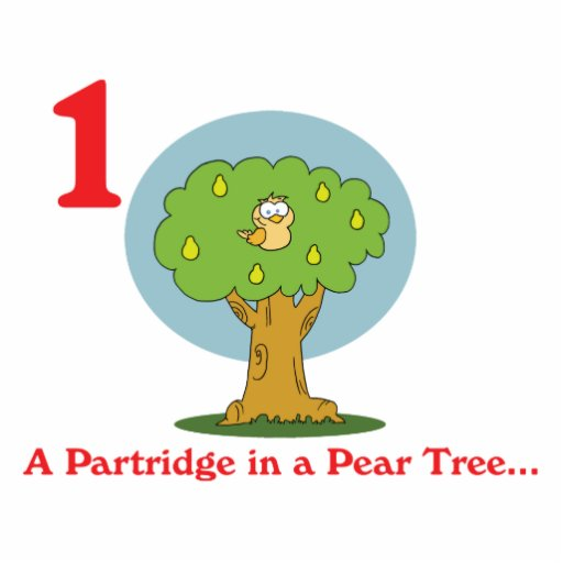 12 days partridge in a pear tree photo sculpture keychain