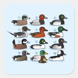 12 Ducks Square Sticker