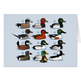 12 Ducks with Key Card