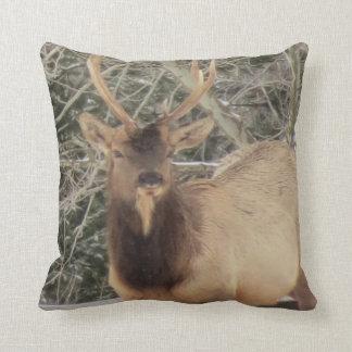#12-Elk Stag Throw Pillow