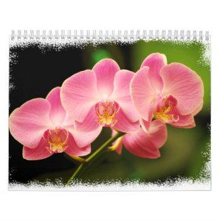 12 meses de orquídeas hermosas calendario