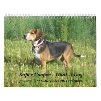 12 Month Beagle Calendar - What A Dog!