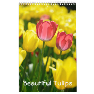 12 month Beautiful Tulips (#2) Calendar