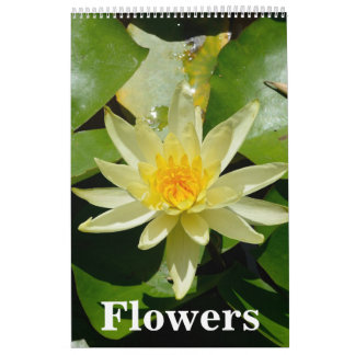 12 month Flowers Wall Calendar