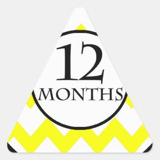 12 Months Chevron Milestone Triangle Sticker