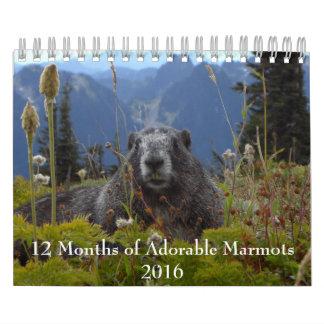 12 Months of Adorable Marmots 2016 Calendar