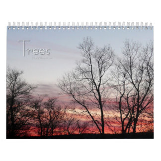 12 Months of Beautiful Trees, 1st Edition Calendar