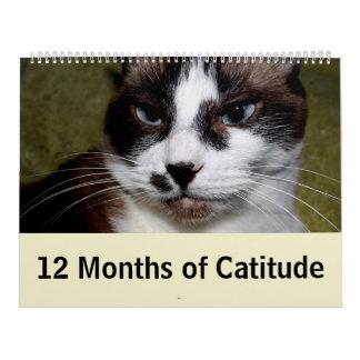 12 months of Catitude Calendar
