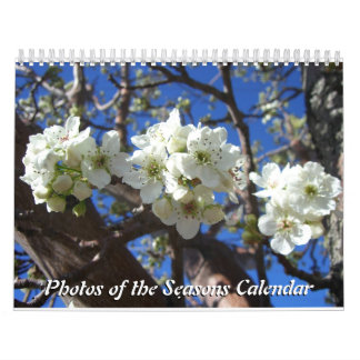 12 Months of Photos of the Seasons, 10th Edition Calendar