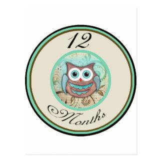 12 Months Owl Milestone Postcard